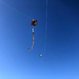 凧上げ日和