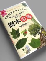 葉っぱ・花・樹皮で見わける 樹木図鑑